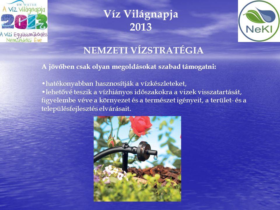 Víz Világnapja 2013 A jövőben csak olyan megoldásokat szabad támogatni: •hatékonyabban hasznosítják a vízkészleteket, •lehetővé teszik a vízhiányos id