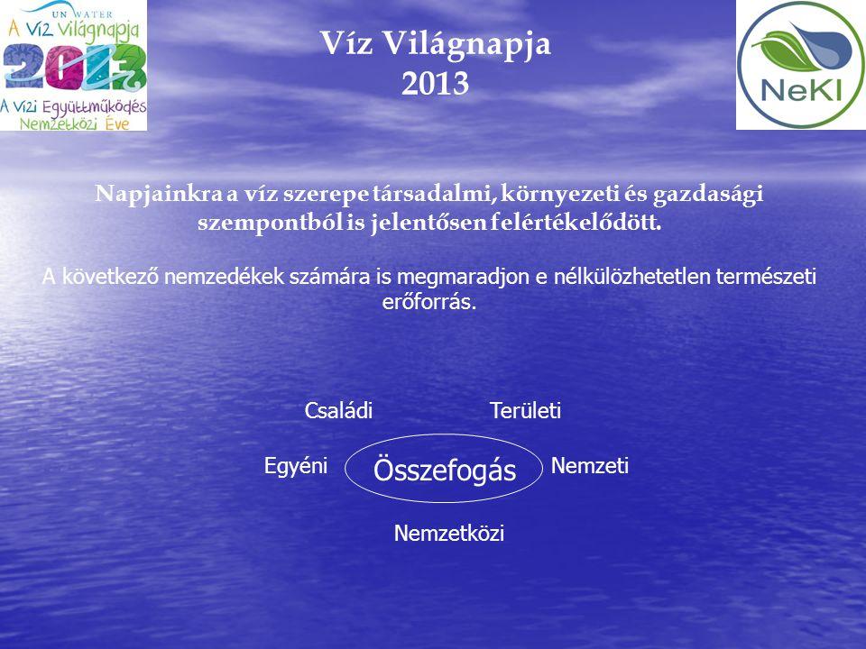 Víz Világnapja 2013 Napjainkra a víz szerepe társadalmi, környezeti és gazdasági szempontból is jelentősen felértékelődött. A következő nemzedékek szá