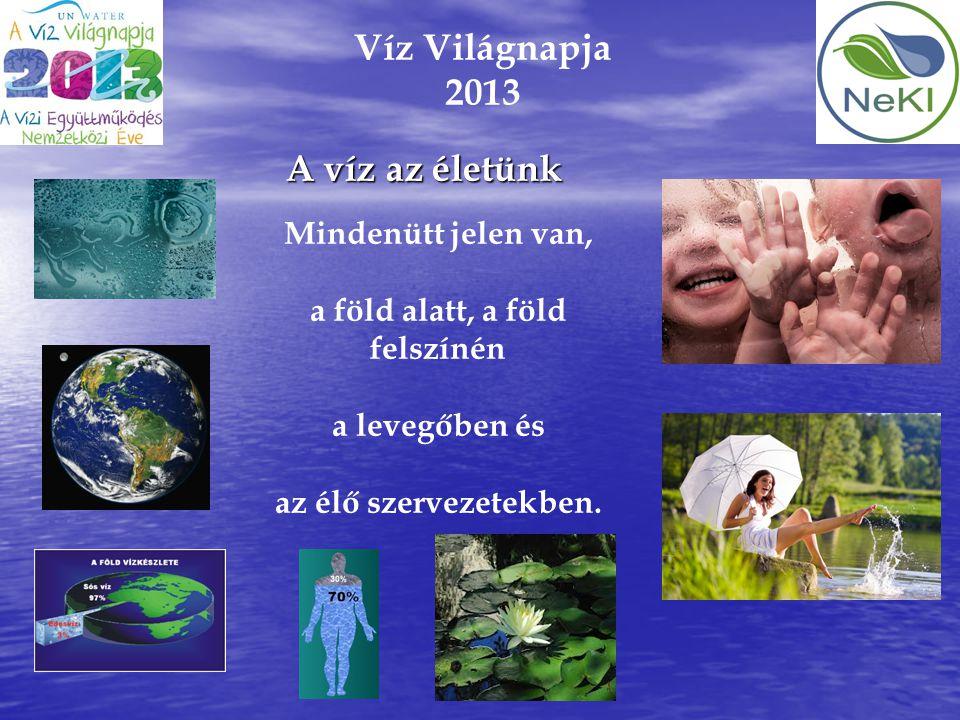 Víz Világnapja 2013 A víz az életünk Mindenütt jelen van, a föld alatt, a föld felszínén a levegőben és az élő szervezetekben.