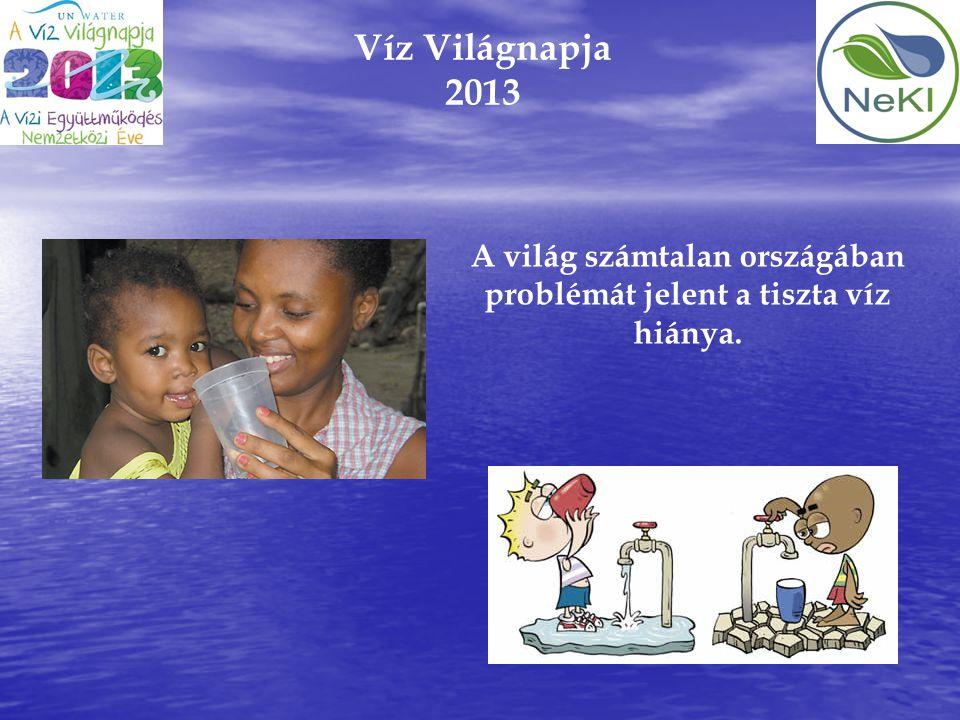 Víz Világnapja 2013 A világ számtalan országában problémát jelent a tiszta víz hiánya.