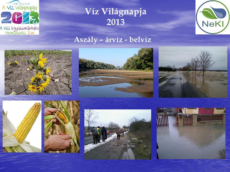 Víz Világnapja 2013 Aszály – árvíz - belvíz