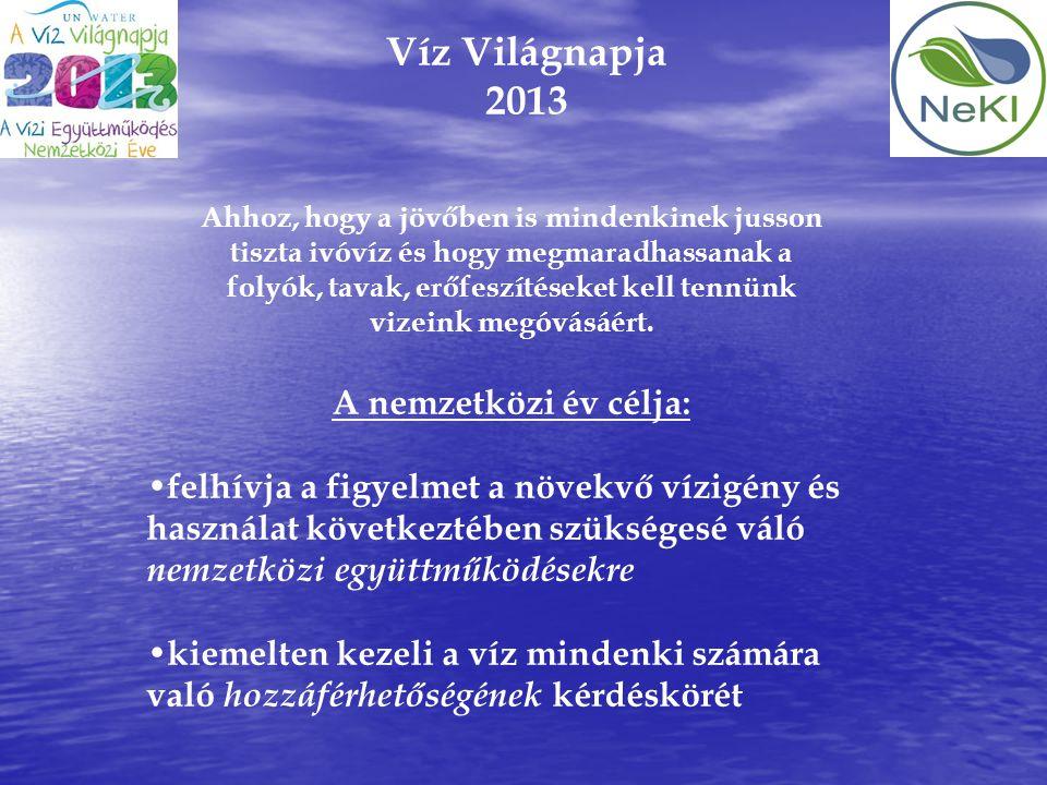 Víz Világnapja 2013 A nemzetközi év célja: • felhívja a figyelmet a növekvő vízigény és használat következtében szükségesé váló nemzetközi együttműköd