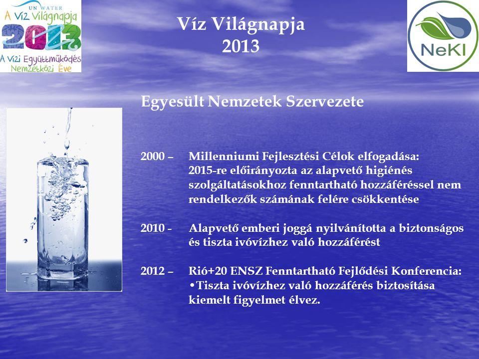 Víz Világnapja 2013 Egyesült Nemzetek Szervezete 2000 – Millenniumi Fejlesztési Célok elfogadása: 2015-re előirányozta az alapvető higiénés szolgáltat