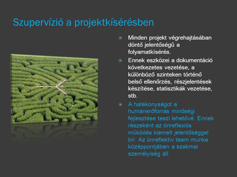 Szupervízió a projektkísérésben  Minden projekt végrehajtásában döntő jelentőségű a folyamatkísérés.  Ennek eszközei a dokumentáció következetes vez