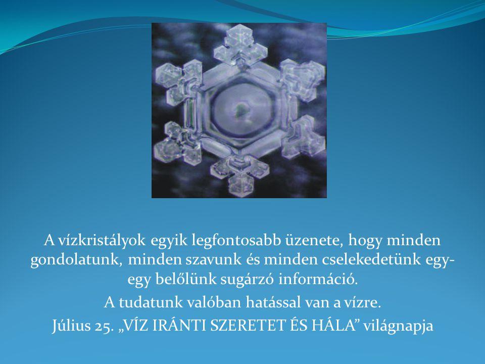 A vízkristályok egyik legfontosabb üzenete, hogy minden gondolatunk, minden szavunk és minden cselekedetünk egy- egy belőlünk sugárzó információ. A tu