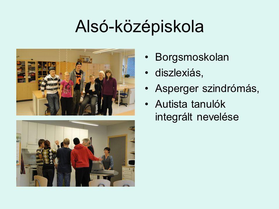 Alsó-középiskola •Borgsmoskolan •diszlexiás, •Asperger szindrómás, •Autista tanulók integrált nevelése