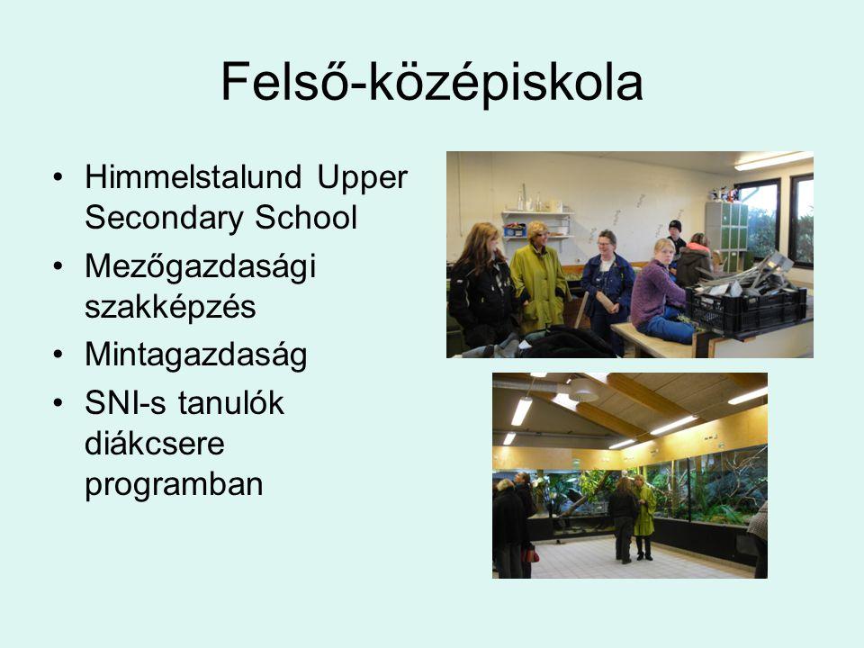 Felső-középiskola •Himmelstalund Upper Secondary School •Mezőgazdasági szakképzés •Mintagazdaság •SNI-s tanulók diákcsere programban
