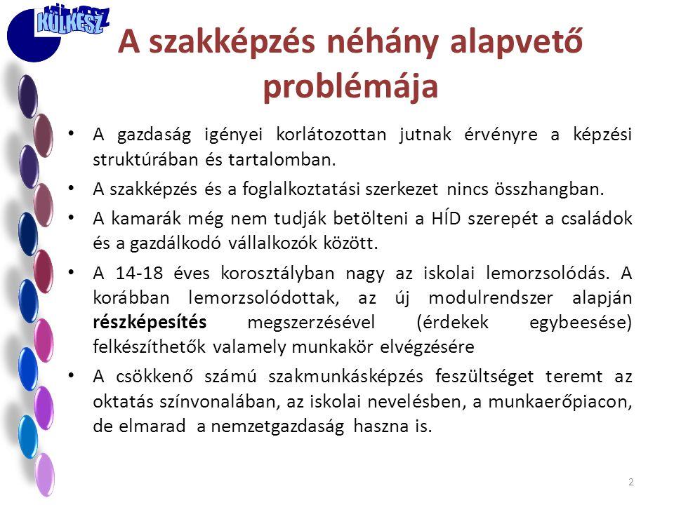 A szakképzés néhány alapvető problémája • A gazdaság igényei korlátozottan jutnak érvényre a képzési struktúrában és tartalomban. • A szakképzés és a