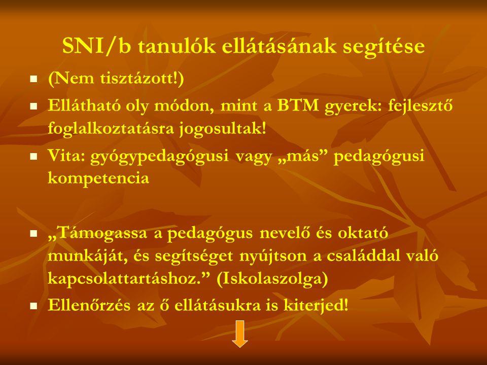 SNI/b tanulók ellátásának segítése   (Nem tisztázott!)   Ellátható oly módon, mint a BTM gyerek: fejlesztő foglalkoztatásra jogosultak.