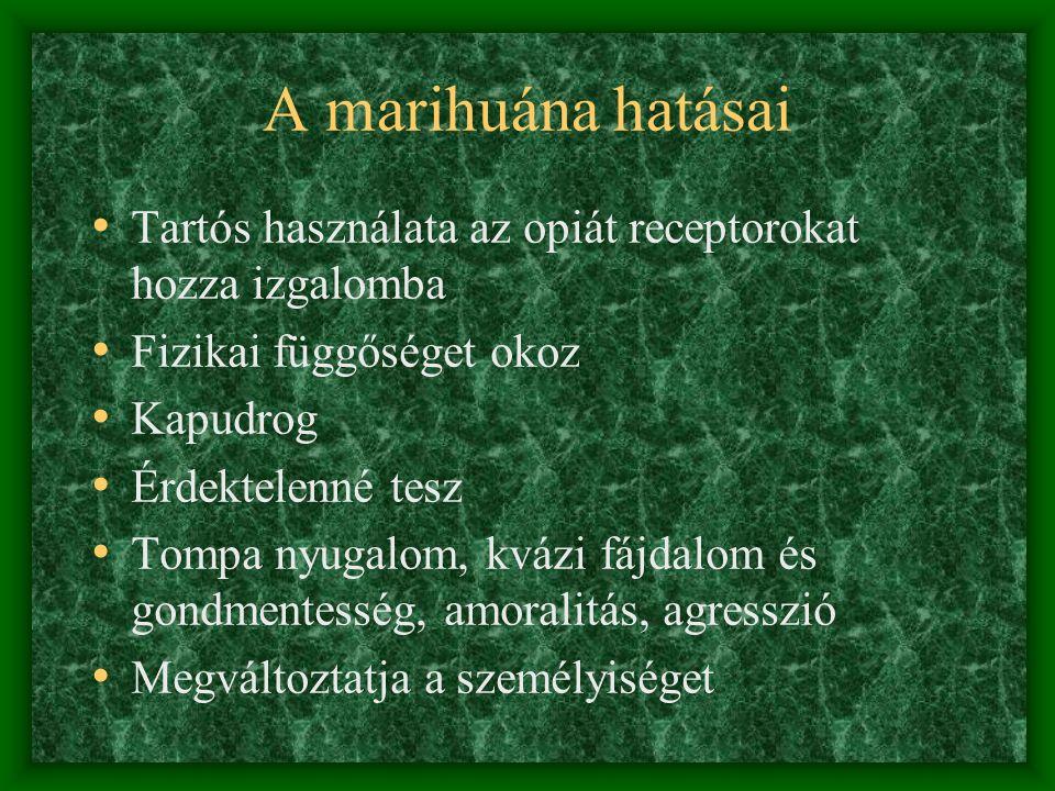 A KÁBÍTÓSZEREK OSZTÁLYOZÁSA • Pszichostimulánsok: amfetamin, metamfetamin, ecstasy, efedrin, kokain • Hallucinogének: LSD, meszkalin, fenciklidin, pszilocibin • Központi idegrendszeri depresszánsok: Opiátok, opioidok, kannabionidok, barbiturátok, benzodiazepinek, alkohol • Inhalálható szerek: ipari oldószerek, általános érzéstelenítok • Designer drogok, műtrágya, fürdősó, permetezőszer,stb.