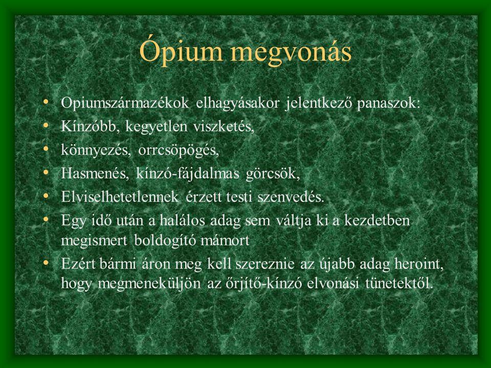Miért és hogy használják? • Ópiumtea – tea vagy por formájában, sokszor a marihuána cigarettába keverve is használják • Morphium – sokáig csak az egés