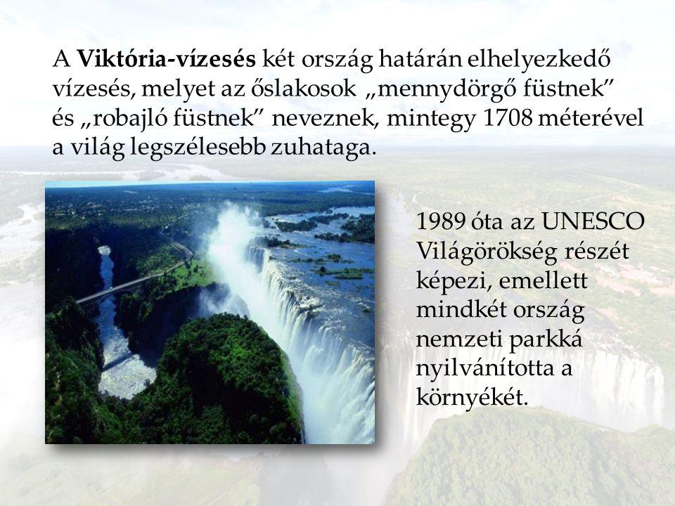Viktória-vízesés