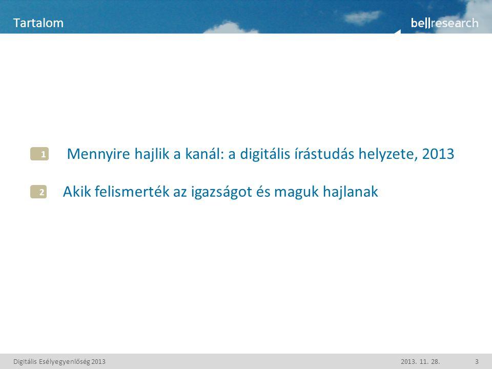 Digitális Esélyegyenlőség 2013 Tartalom 2013. 11.
