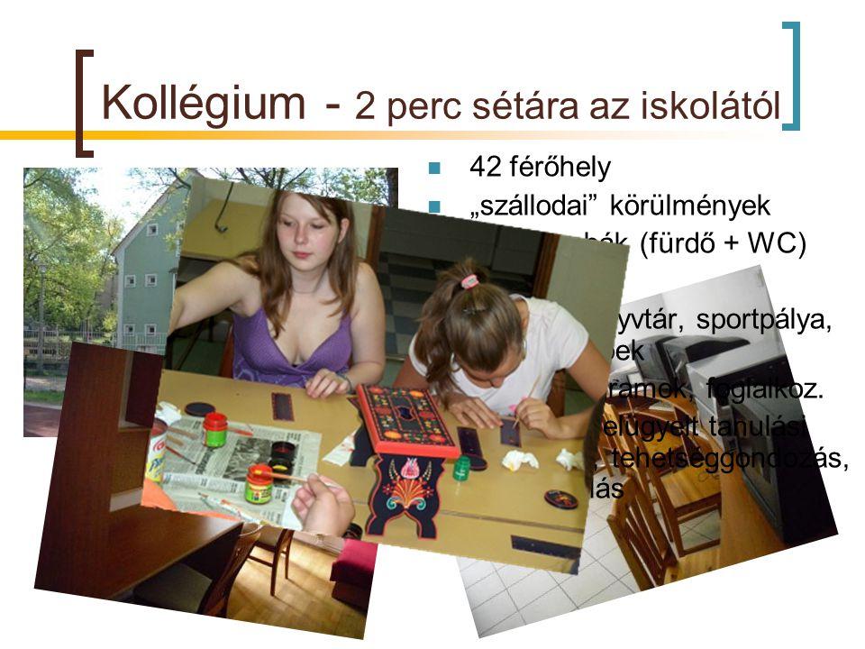 """Kollégium - 2 perc sétára az iskolától  42 férőhely  """"szállodai"""" körülmények  2 fős szobák (fürdő + WC)  Duna-part  étkező, könyvtár, sportpálya,"""