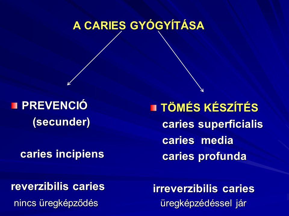A CARIES GYÓGYÍTÁSA PREVENCIÓ (secunder) (secunder) caries incipiens caries incipiens reverzibilis caries nincs üregképződés nincs üregképződés TÖMÉS