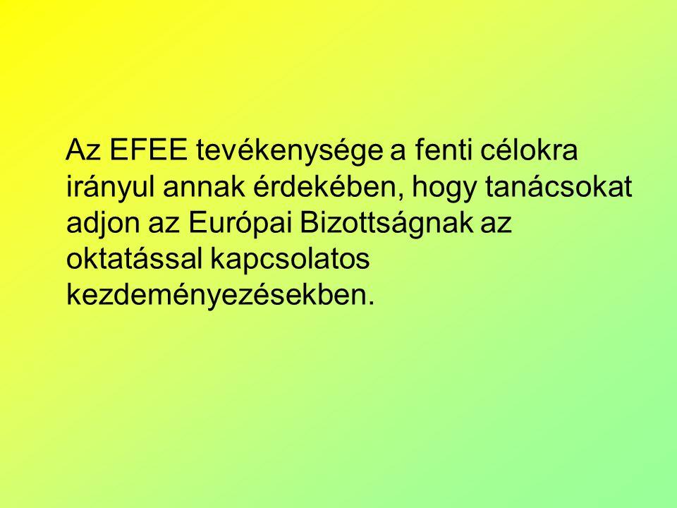 Az EFEE tevékenysége a fenti célokra irányul annak érdekében, hogy tanácsokat adjon az Európai Bizottságnak az oktatással kapcsolatos kezdeményezésekben.