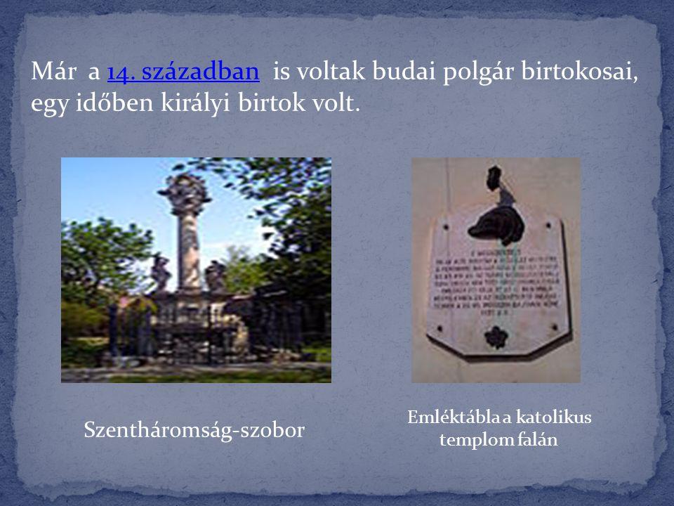 Szentháromság-szobor Emléktábla a katolikus templom falán Már a 14. században is voltak budai polgár birtokosai, egy időben királyi birtok volt.14. sz
