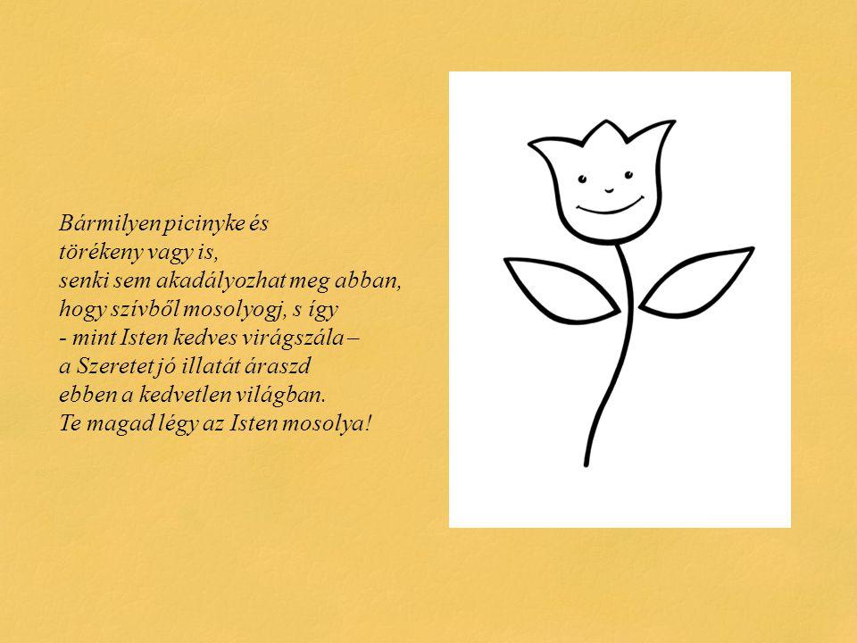 Bármilyen picinyke és törékeny vagy is, senki sem akadályozhat meg abban, hogy szívből mosolyogj, s így - mint Isten kedves virágszála – a Szeretet jó