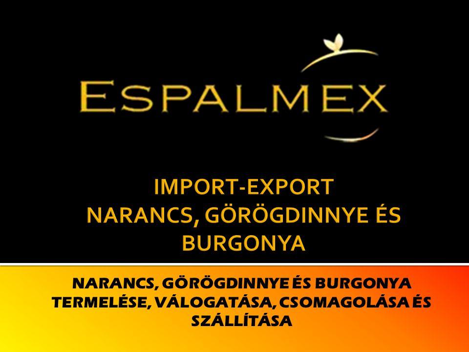 Vállalatunk Az ESPALMEX, S.L.