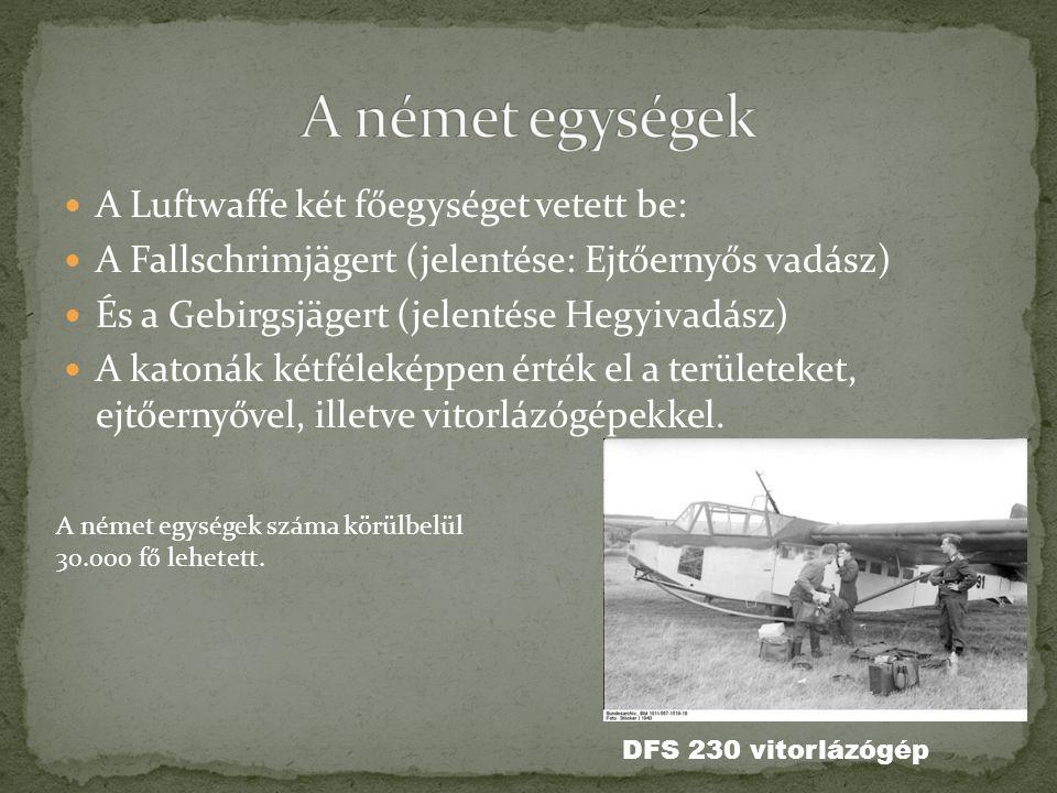  A Luftwaffe két főegységet vetett be:  A Fallschrimjägert (jelentése: Ejtőernyős vadász)  És a Gebirgsjägert (jelentése Hegyivadász)  A katonák k