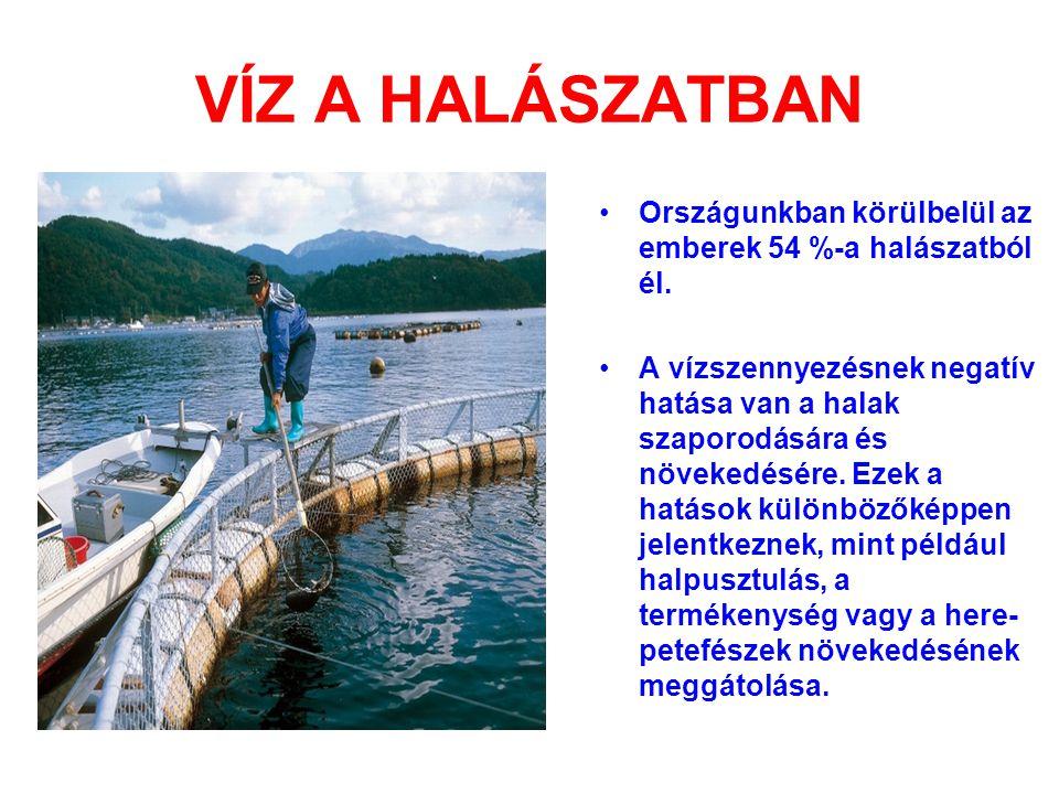 VÍZ A HALÁSZATBAN •Országunkban körülbelül az emberek 54 %-a halászatból él. •A vízszennyezésnek negatív hatása van a halak szaporodására és növekedés