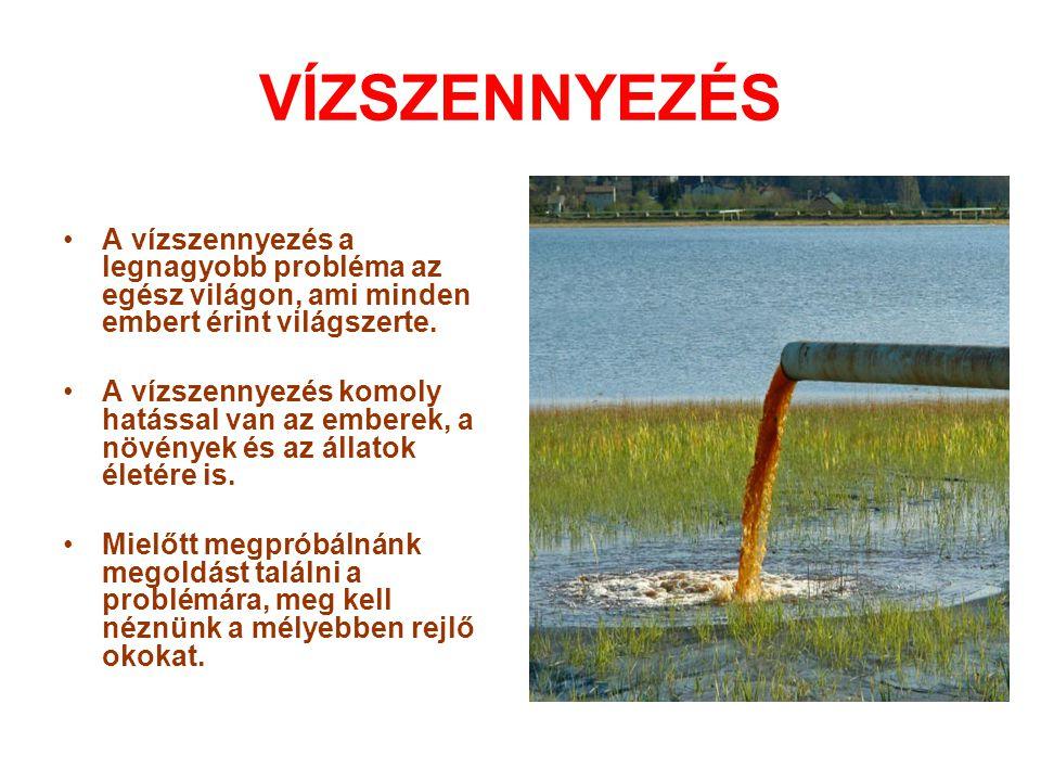 VÍZSZENNYEZÉS •A vízszennyezés a legnagyobb probléma az egész világon, ami minden embert érint világszerte. •A vízszennyezés komoly hatással van az em