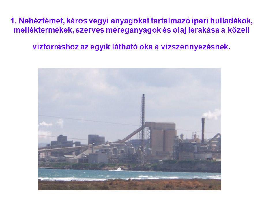 1. Nehézfémet, káros vegyi anyagokat tartalmazó ipari hulladékok, melléktermékek, szerves méreganyagok és olaj lerakása a közeli vízforráshoz az egyik