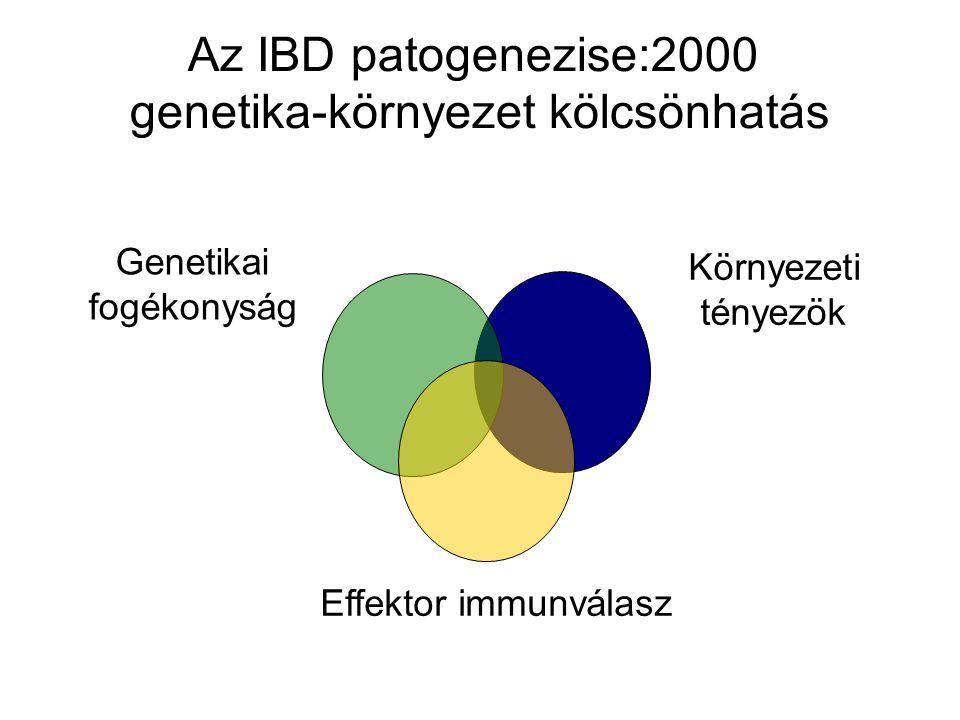 Az IBD patogenezise:2000 genetika-környezet kölcsönhatás Genetikai fogékonyság Környezeti tényezök Effektor immunválasz