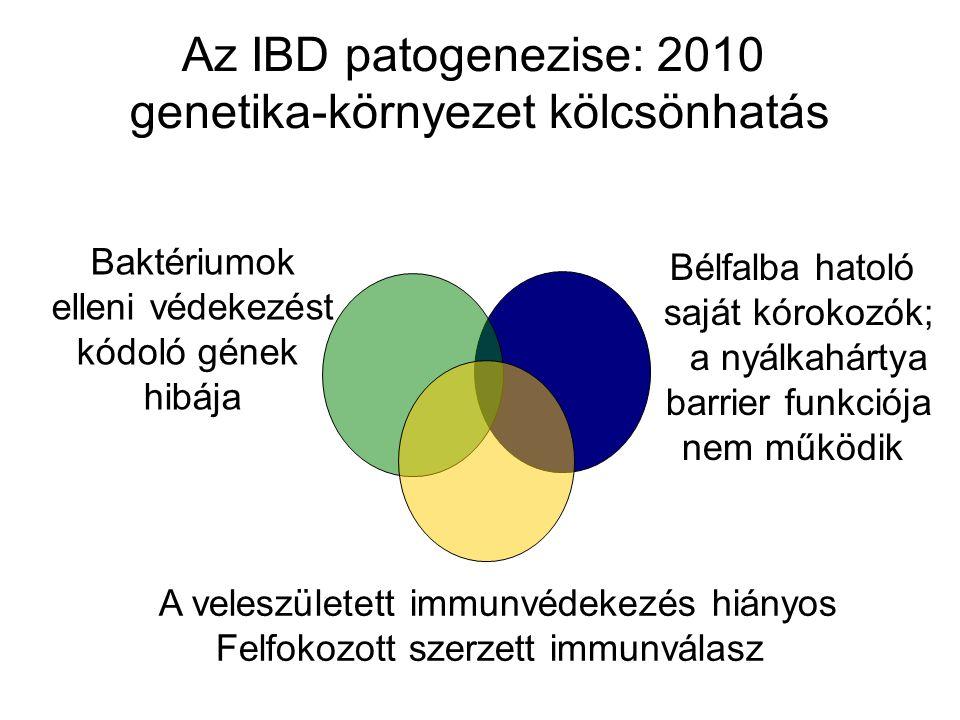 Az IBD patogenezise: 2010 genetika-környezet kölcsönhatás Baktériumok elleni védekezést kódoló gének hibája Bélfalba hatoló saját kórokozók; a nyálkah