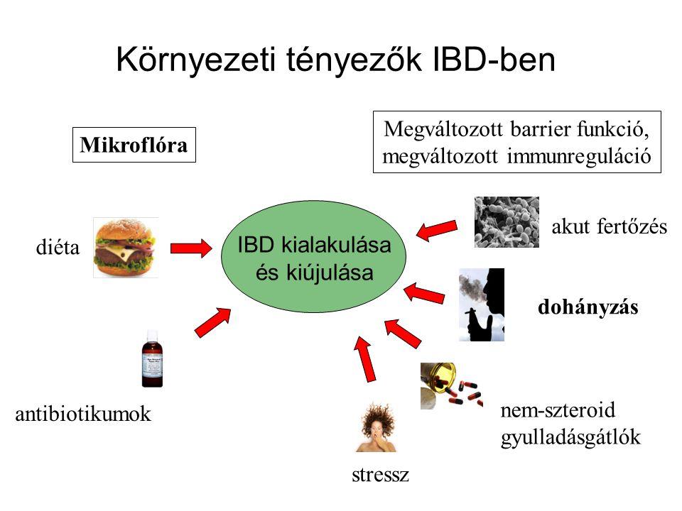 Megbillen a belső környezet dinamikus egyensúlya •heves gyulladásos folyamatok • a bélnyálkahártya sérülése •a sérüléseken (fekélyeken) keresztül egyre több baktérium kerül a mélyebb rétegekbe •ezen antigének hatására fokozódnak az immuntörténések Mi történik a bélben IBD-ben?