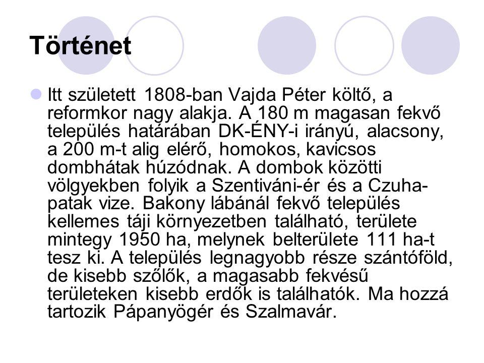 Történet  Itt született 1808-ban Vajda Péter költő, a reformkor nagy alakja.