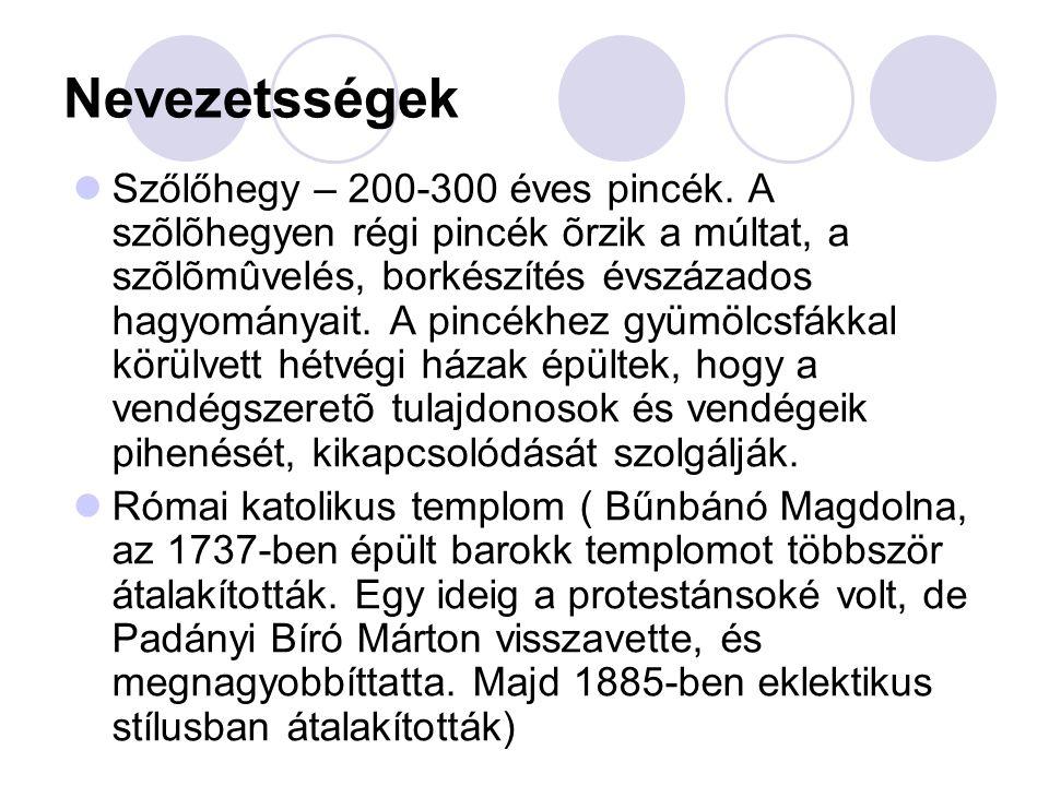 Nevezetsségek  Szőlőhegy – 200-300 éves pincék.