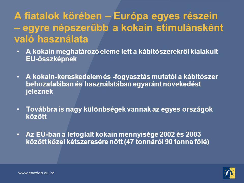 A fiatalok körében – Európa egyes részein – egyre népszerűbb a kokain stimulánsként való használata •A kokain meghatározó eleme lett a kábítószerekről kialakult EU-összképnek •A kokain-kereskedelem és -fogyasztás mutatói a kábítószer behozatalában és használatában egyaránt növekedést jeleznek •Továbbra is nagy különbségek vannak az egyes országok között •Az EU-ban a lefoglalt kokain mennyisége 2002 és 2003 között közel kétszeresére nőtt (47 tonnáról 90 tonna fölé)