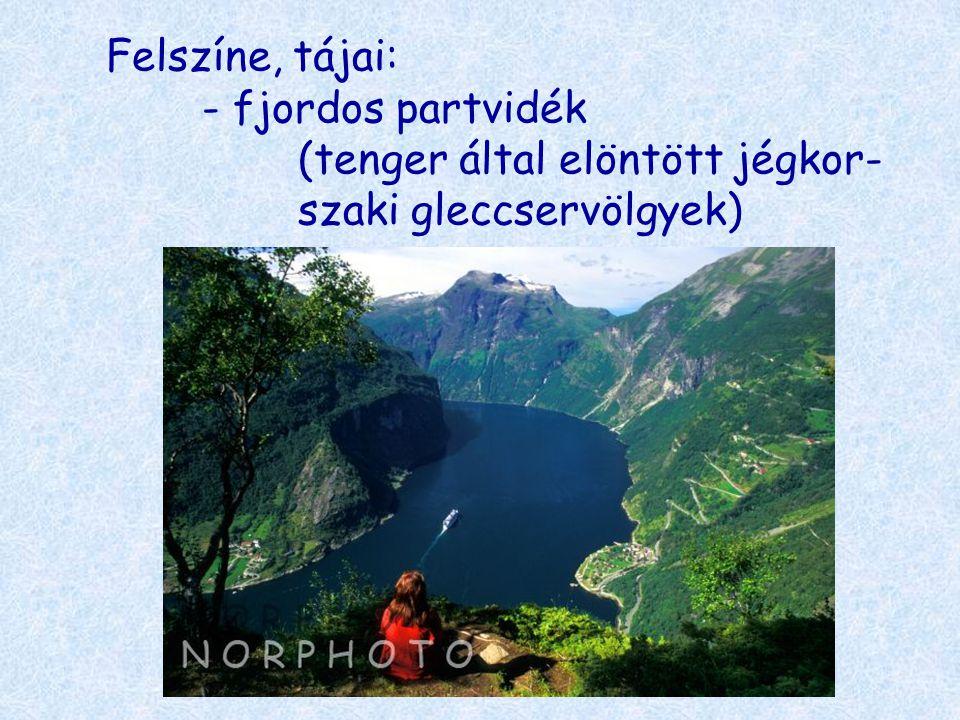 Felszíne, tájai: - fjordos partvidék (tenger által elöntött jégkor- szaki gleccservölgyek)