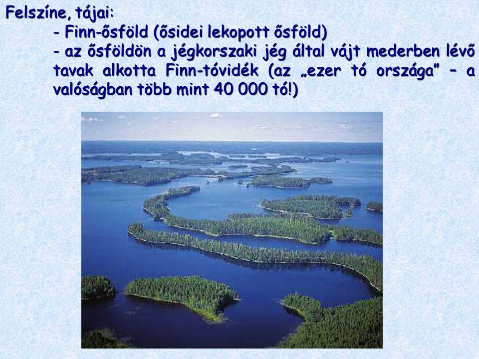 """Felszíne, tájai: - Finn-ősföld (ősidei lekopott ősföld) - az ősföldön a jégkorszaki jég által vájt mederben lévő tavak alkotta Finn-tóvidék (az """"ezer"""