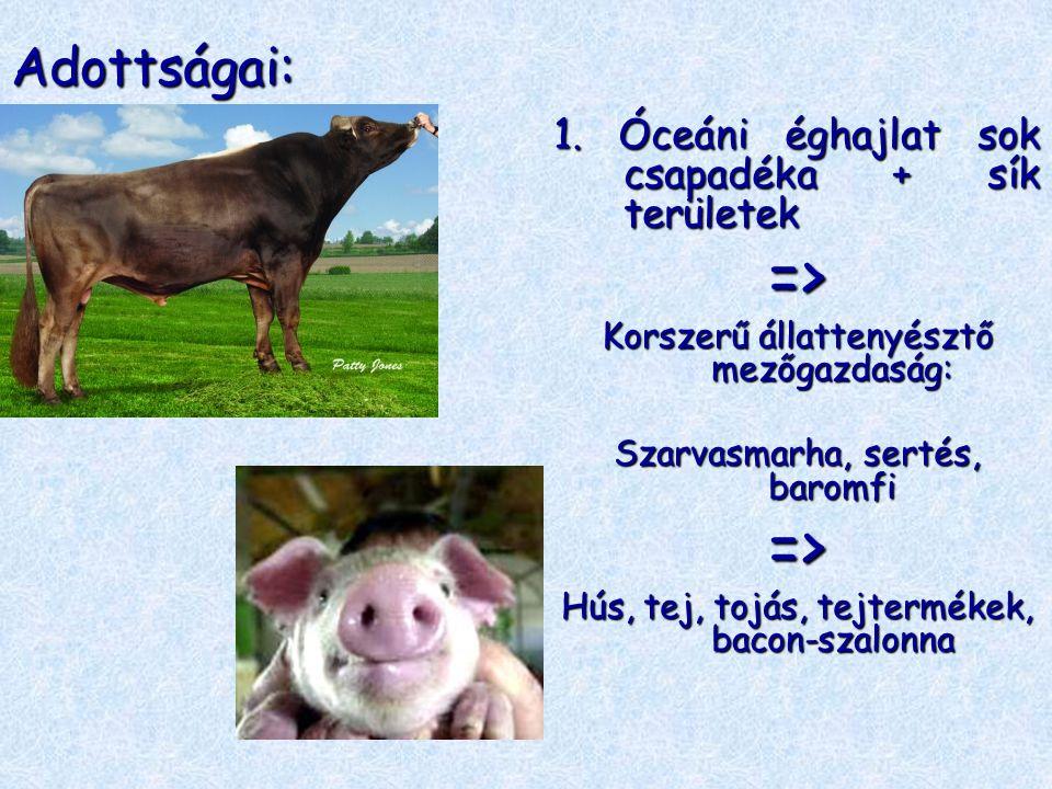 Adottságai: 1. Óceáni éghajlat sok csapadéka + sík területek => Korszerű állattenyésztő mezőgazdaság: Szarvasmarha, sertés, baromfi => Hús, tej, tojás