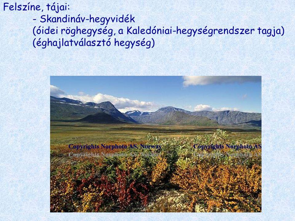 Felszíne, tájai: - Skandináv-hegyvidék (óidei röghegység, a Kaledóniai-hegységrendszer tagja) (éghajlatválasztó hegység)