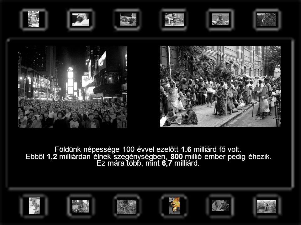 Földünk népessége 100 évvel ezelőtt 1.6 milliárd fő volt. Ez mára több, mint 6,7 milliárd. Ebből 1,2 milliárdan élnek szegénységben, 800 millió ember