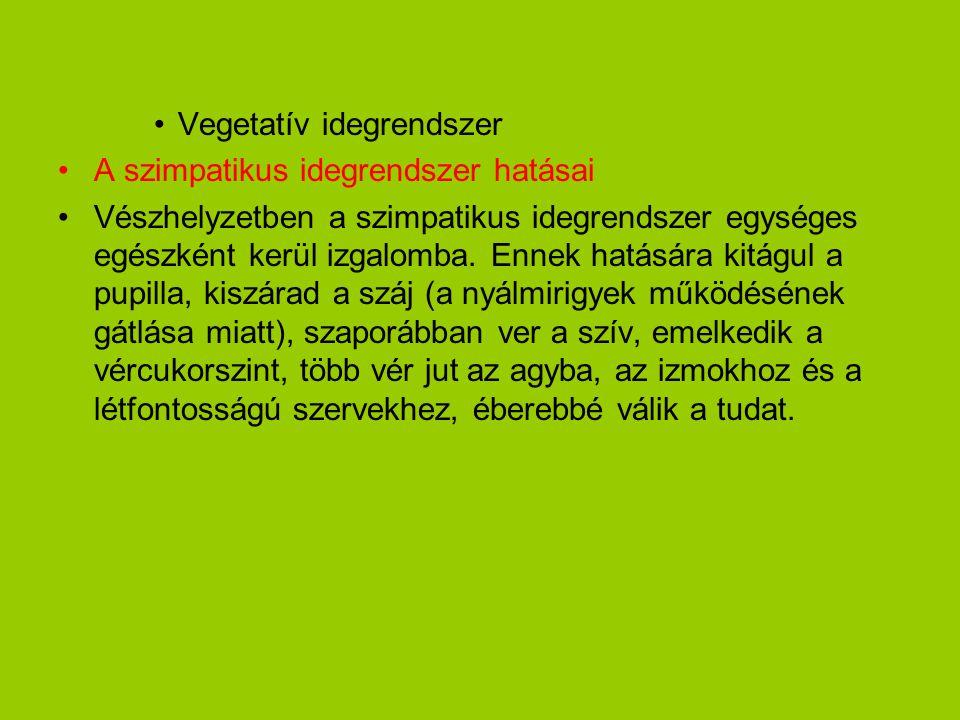•Vegetatív idegrendszer •A szimpatikus idegrendszer hatásai •Vészhelyzetben a szimpatikus idegrendszer egységes egészként kerül izgalomba. Ennek hatás