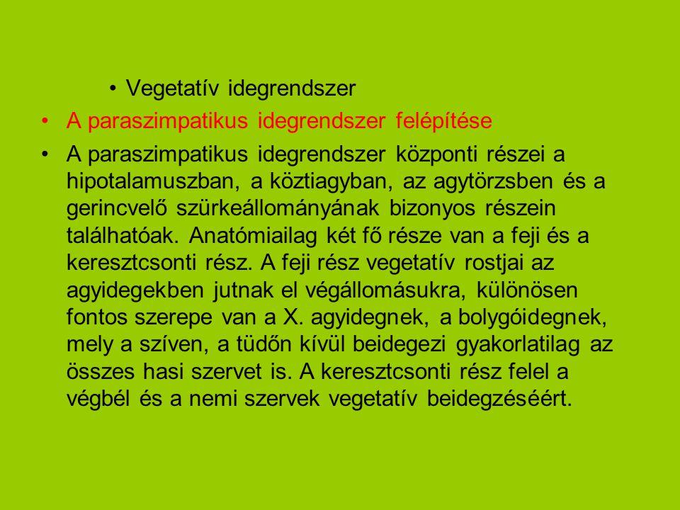 •Vegetatív idegrendszer •A paraszimpatikus idegrendszer felépítése •A paraszimpatikus idegrendszer központi részei a hipotalamuszban, a köztiagyban, a