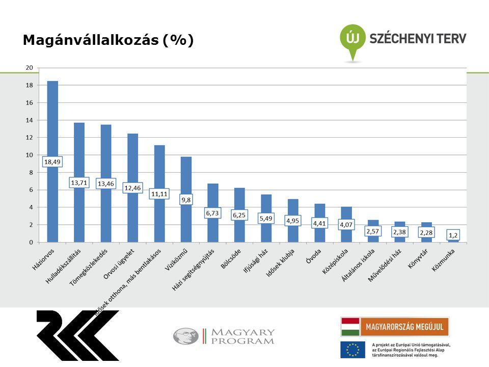 Magánvállalkozás (%)