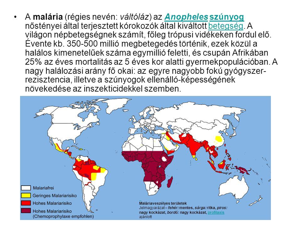•A malária (régies nevén: váltóláz) az Anopheles szúnyog nőstényei által terjesztett kórokozók által kiváltott betegség.