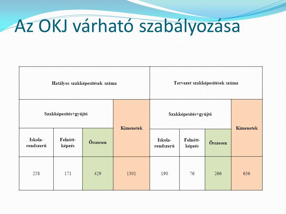Az OKJ várható szabályozása Hatályos szakképesítések száma Szakképesítés+gyűjtő Kimenetek Iskola- rendszerű Felnőtt- képzés Összesen 2581714291301 Ter