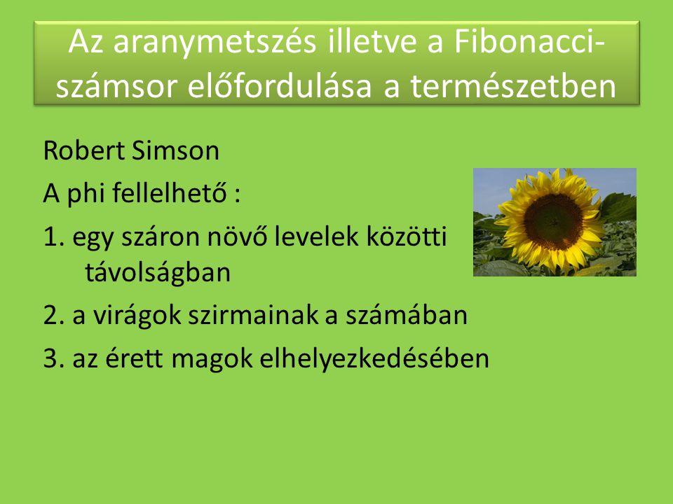 Az aranymetszés illetve a Fibonacci- számsor előfordulása a természetben Robert Simson A phi fellelhető : 1. egy száron növő levelek közötti távolságb