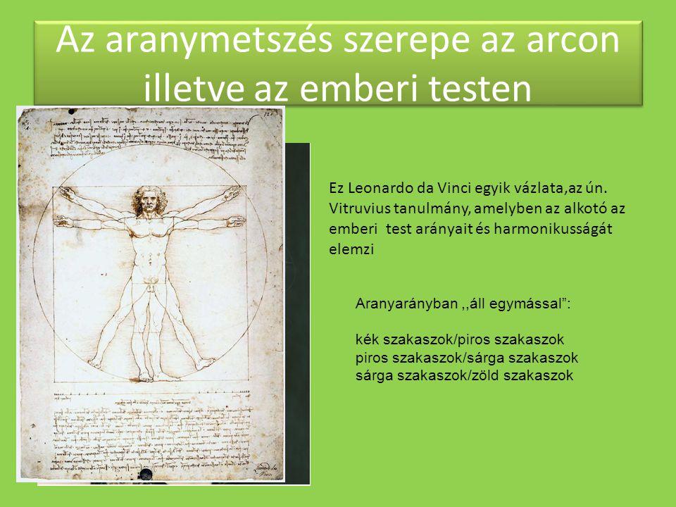 Az aranymetszés szerepe az arcon illetve az emberi testen Ez Leonardo da Vinci egyik vázlata,az ún. Vitruvius tanulmány, amelyben az alkotó az emberi