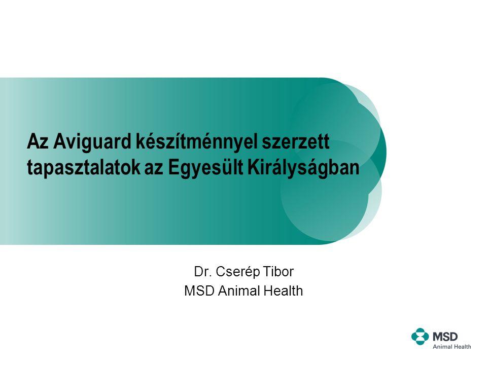 Az Aviguard készítménnyel szerzett tapasztalatok az Egyesült Királyságban Dr. Cserép Tibor MSD Animal Health