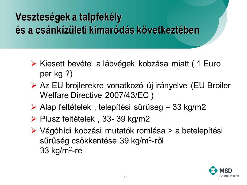 13 Veszteségek a talpfekély és a csánkízületi kimaródás következtében  Kiesett bevétel a lábvégek kobzása miatt ( 1 Euro per kg ?)  Az EU brojlerekr