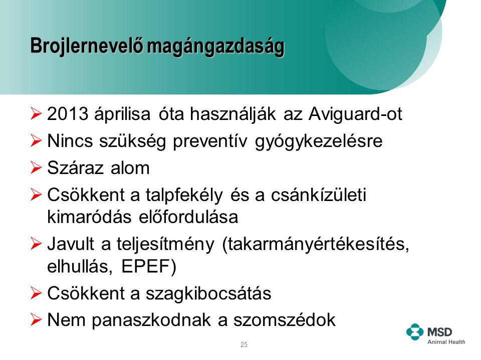 25 Brojlernevelő magángazdaság  2013 áprilisa óta használják az Aviguard-ot  Nincs szükség preventív gyógykezelésre  Száraz alom  Csökkent a talpf