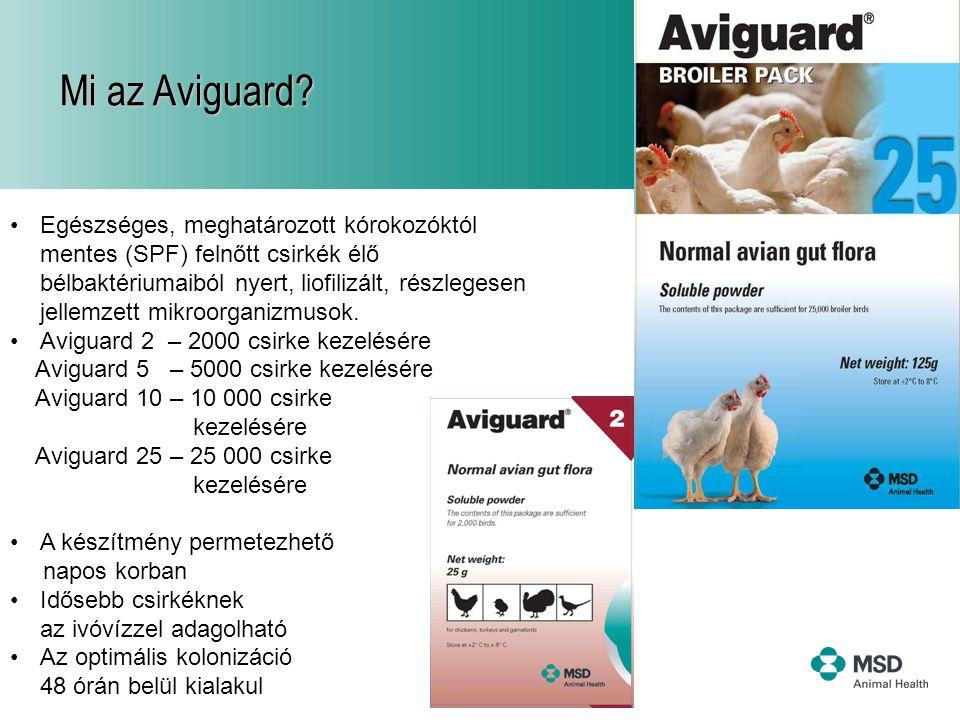 6 Mi az Aviguard? •Egészséges, meghatározott kórokozóktól mentes (SPF) felnőtt csirkék élő bélbaktériumaiból nyert, liofilizált, részlegesen jellemzet