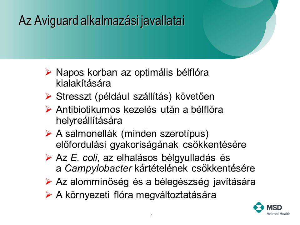 7  Napos korban az optimális bélflóra kialakítására  Stresszt (például szállítás) követően  Antibiotikumos kezelés után a bélflóra helyreállítására